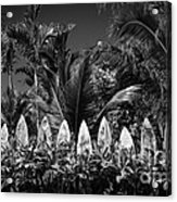 Surf Board Fence Maui Hawaii Black And White Acrylic Print by Edward Fielding