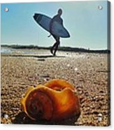 Surfer And Shell Hatteras Lighthouse 3 10/1 Acrylic Print