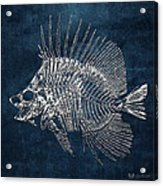 Surgeonfish Skeleton In Silver On Blue  Acrylic Print