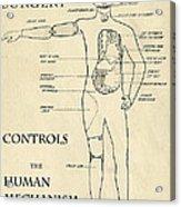 Surgery Controls The Human Mechanism   1906 Acrylic Print
