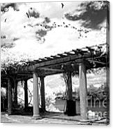 Surreal Augusta Georgia Black And White Infrared  - Riverwalk River Front Park Garden   Acrylic Print
