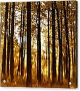 Surreal Autumn Acrylic Print