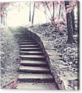 Surreal Fantasy Fairytale Pink Trees And Ethereal Woodlands Staircase  Acrylic Print by Kathy Fornal