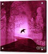 Surreal Fantasy Gothic Raven Crow Nature Acrylic Print