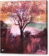 Surreal Fantasy Nature Tree Pink Landscape Acrylic Print by Kathy Fornal