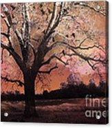 Surreal Gothic Fantasy Trees Pink Sky Ravens Acrylic Print
