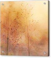 Surreal Grass Acrylic Print