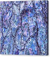 Surreal Patterned Bark In Blue Acrylic Print