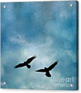 Surreal Ravens Crows Flying Blue Sky Stars Acrylic Print
