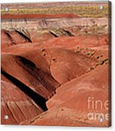 Surreal Red Landscape Acrylic Print