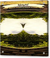 Surreal Reflecting Pool Acrylic Print