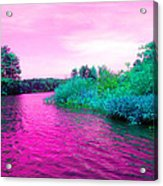 Surrreal Pink Waters Acrylic Print