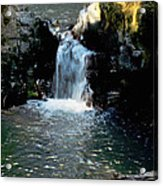 Susan Creek Falls Series 4 Acrylic Print