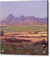 Sutter Buttes In Summer Afternoon Acrylic Print