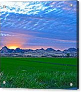 Sutter Buttes Sunset Ray Burst In The Rice Fields  Acrylic Print