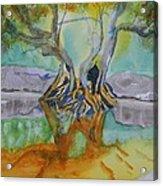 Suwannee River Ogeechee Tupelo  Acrylic Print