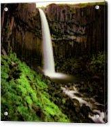 Svartifoss Waterfall, Skaftafell Acrylic Print