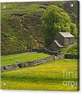 Swaledale Landscape Acrylic Print