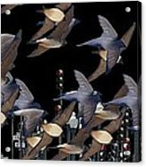 Swallows In The City Acrylic Print