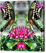 Swallowtail Butterfly Digital Art Acrylic Print