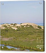 Swamp And Dunes Acrylic Print