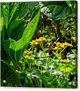 Swamp Bouquet Acrylic Print