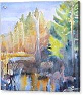 Swamp Color Acrylic Print
