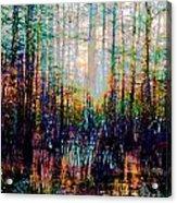 Swamp Colorfest Acrylic Print