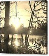 Swampy Sunset #4 Acrylic Print