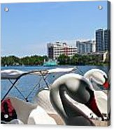 Swan Boats And Buildings Acrylic Print