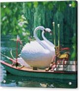 Swan Boats In A Lake, Boston Common Acrylic Print