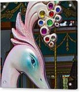 Swan Carrsoul Ride Acrylic Print