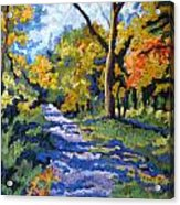 Swan Creek Pathway Acrylic Print