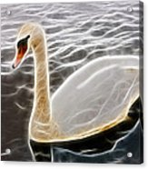 Swan In The Water Fractal Acrylic Print