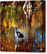 Swan Lake Heron II Acrylic Print