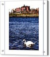 Swan Lake Poster Acrylic Print