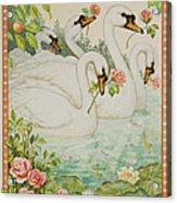 Swan Romance Acrylic Print