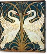 Swan Rush And Iris Acrylic Print