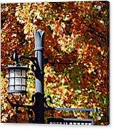 Swan Street Acrylic Print