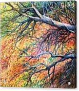 Sway Dancing Trees Acrylic Print