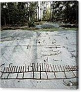 Sweden. Tanum. Petroglyphs Of Tanum Acrylic Print