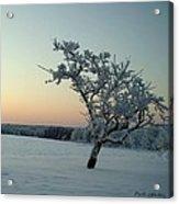 Swedish Winter Acrylic Print by Carola Ann-Margret Forsberg