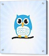 Sweet And Cute Owl Acrylic Print