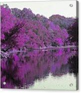 Sweet Fall Reflections Acrylic Print
