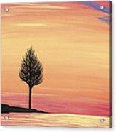 Sweet Raspberry Sunset Acrylic Print