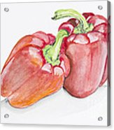 Sweet Red  Paprika Pepper Acrylic Print