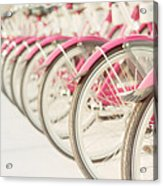 Sweet Rides Acrylic Print by Amy Tyler
