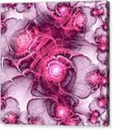 Sweet Sakura Acrylic Print