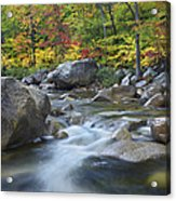 Swift River In Fall White Mountains New Acrylic Print