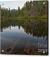 Swim Lake Acrylic Print